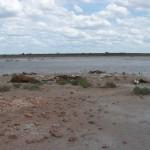 Eventos extremos: sequía prolongada en el departamento de Utracán.
