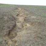 Erosión hídrica en cárcavas en zona de cultivos de soja.